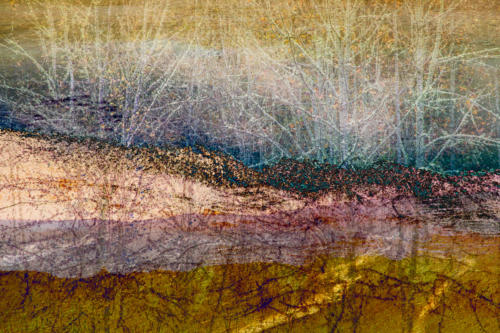 Concentric_Landscapre_Triptych_Ebeys_Landing_Yellowstone_Nisqually